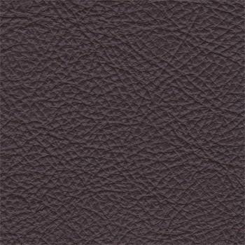 Amigo - Pravý roh (togo 6)