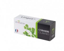 Bio koriander do inteligentných kvetináčov Véritable Lingot