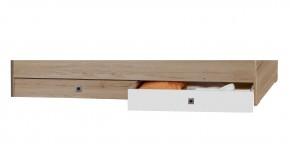Cariba - Úložný prostor pod Posteľ (san remo dub, biela)