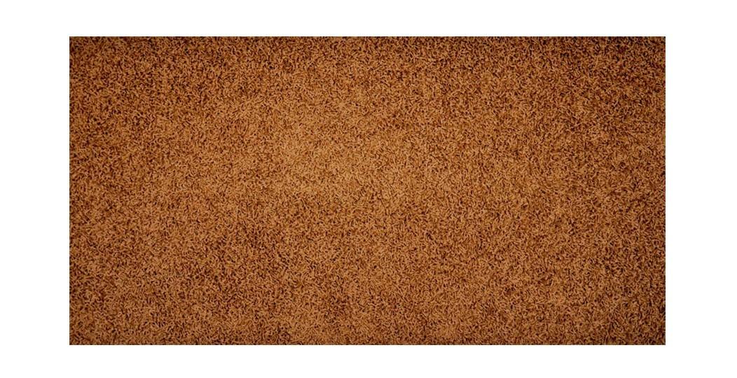 Elite Shaggy - koberec, 200x140cm (100%PP shaggy, hnedá)