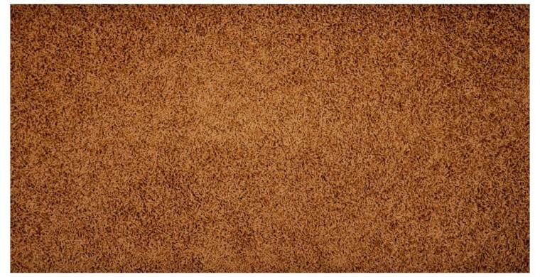 Elite Shaggy - koberec, 300x200cm (100%PP shaggy, hnedá)