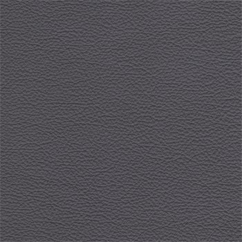 Enjoy - Kreslo, kože, drevené nohy (naturelle D 11141 steel)