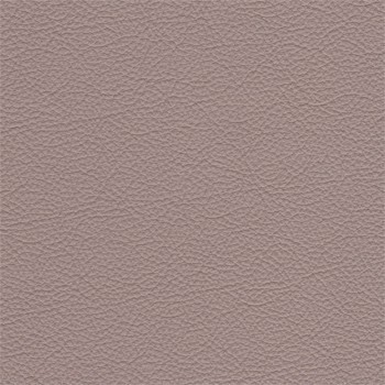 Enjoy - Kreslo, kože, drevené nohy (naturelle D 11171 rhino)