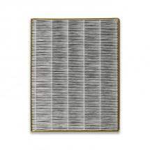 Filter do čističky vzduchu Toshiba CAFX50XPL CAF-H30(W)