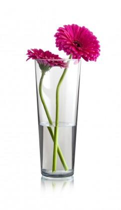 Flora - Váza kónická, 26 cm (sklo číre)