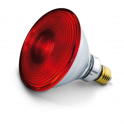 Halogénové žiarovky Náhradná žiarovka pre IL 30, 150W