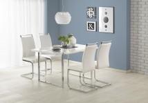 Jedálenský stôl Lion - 140x80x75 cm (bílá/stříbrná)
