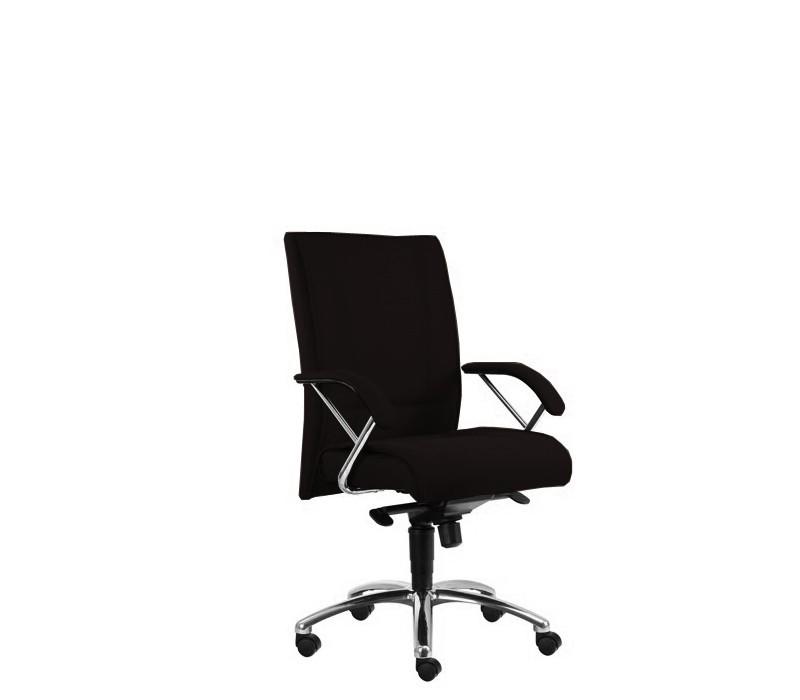 Kancelárske kreslo Demos Prof - Kancelárska stolička s opierkami (alcatraz 17)