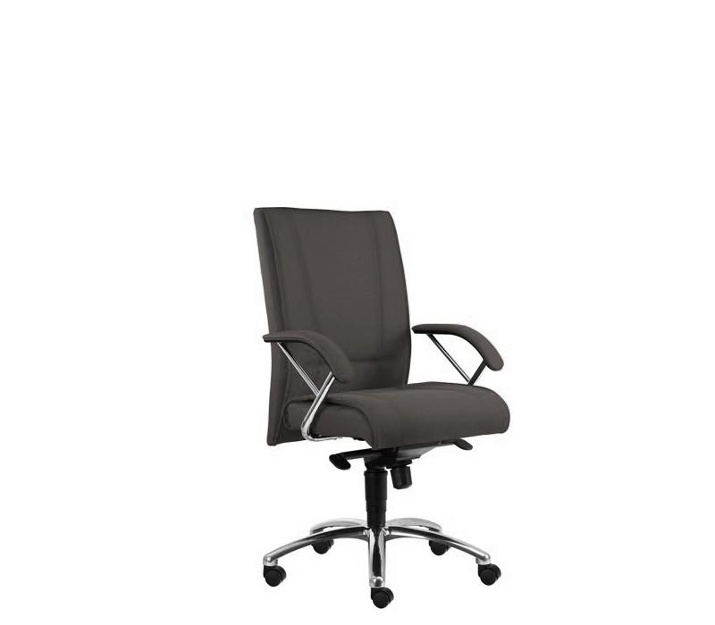 Kancelárske kreslo Demos Prof - Kancelárska stolička s opierkami (alcatraz 19)