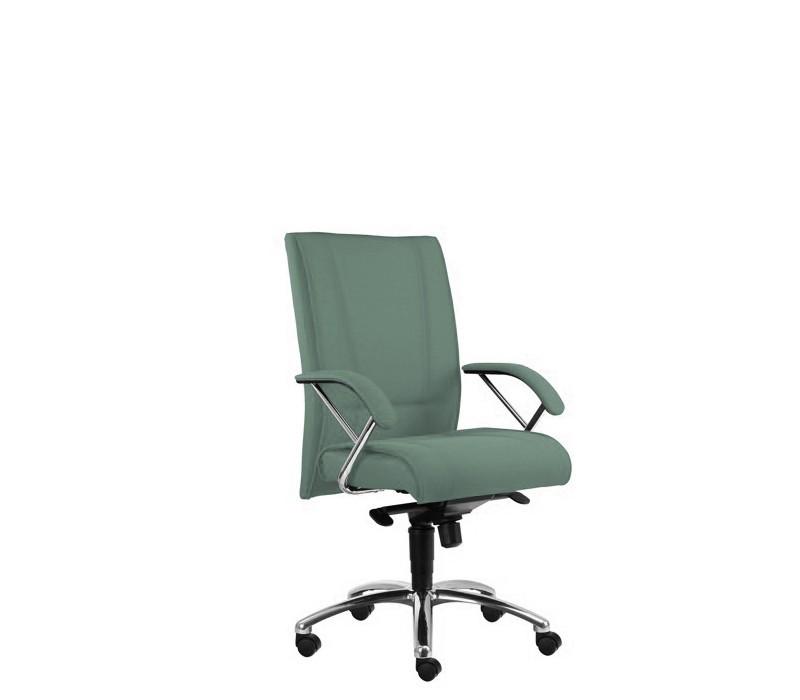 Kancelárske kreslo Demos Prof - Kancelárska stolička s opierkami (alcatraz 30)