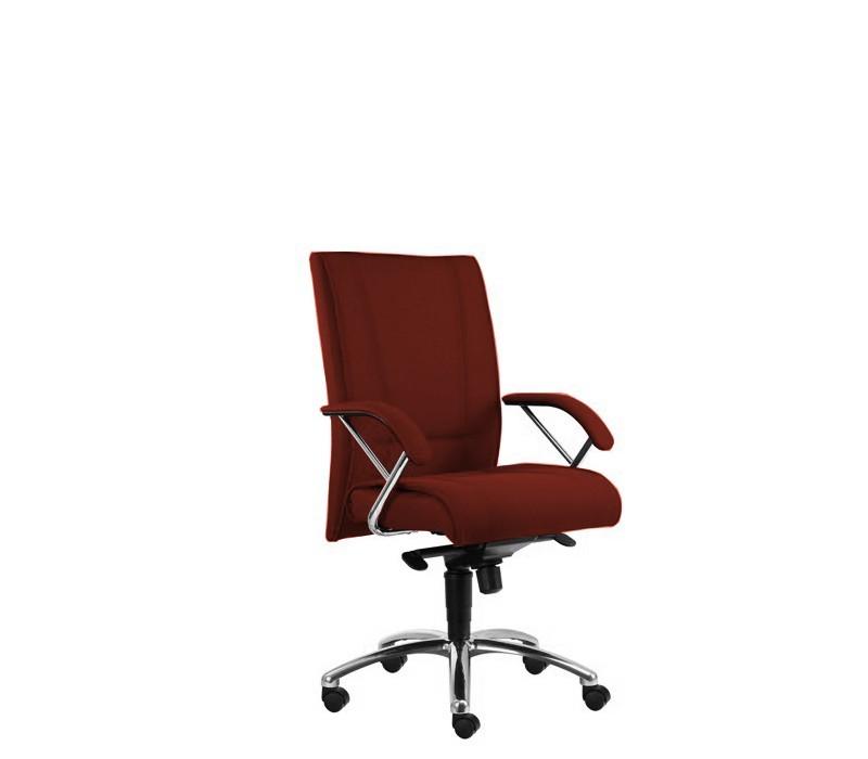 Kancelárske kreslo Demos Prof - Kancelárska stolička s opierkami (alcatraz 32)