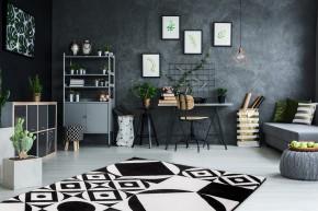 Koberec Black & white (160x230 cm, čierna/biela)