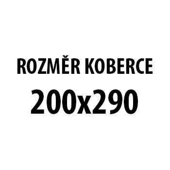 Koberec - Miami 6540, 200x290 cm (bieločierna)