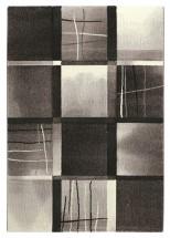 Kusový koberec Dalibor 21 (120x170 cm)