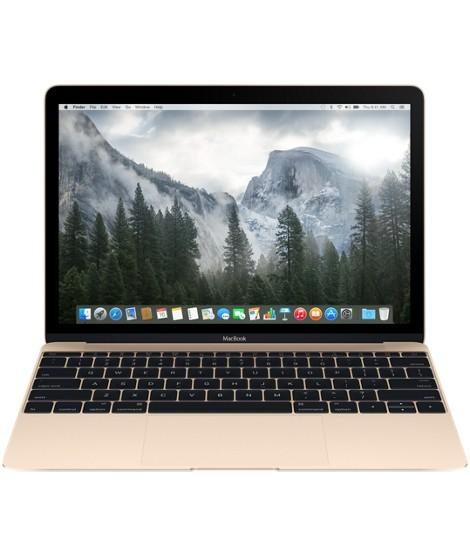 Mininotebooky Apple MacBook MK4N2CZ/A