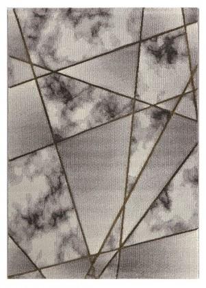 Moderné koberce Kusový koberec Dalibor 32 (140x200 cm)