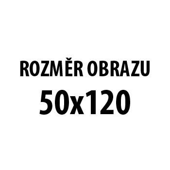 Obraz AR 207, 50x120 cm (fototlač na plátne)