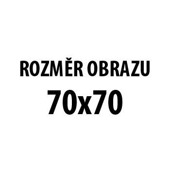 Obraz AR 210, 70x70 cm (fototlač na plátne)