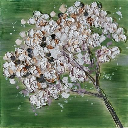 Obraz Flowers Z351, 60x60 cm (kvety)