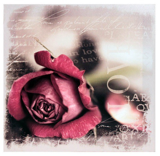 Obraz  - plátno (bordó ruže)