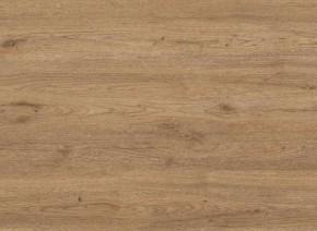 Panel do kuchyne 2,6 m (dub zlatý)