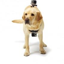 Popruh NICEBOY pre upevnenie na psa