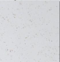 Pracovná doska Minimax PD 210 - 210x60 cm (tropica beige)