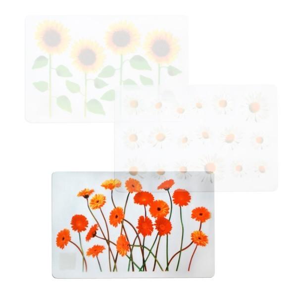 Prestieranie (kvety gerbera, transparentné)
