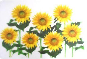 Prestieranie (kvety vlčí mak)