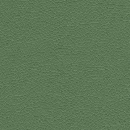 Rohová Elba - Ľavá (pulse elephant D224, korpus/pulse grass D241)