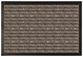 Rohožka RPP15 (50x80 cm)