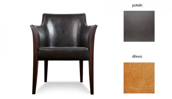 Samostatné kreslo Bari 1 (extra leather brown sk. III / drevo č. 4)