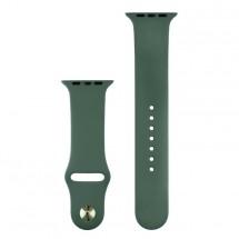 Silikónový športový remienok na Apple watch 42/44 mm, T zelený