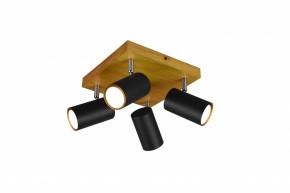 Spotové svietidlo Trio TR 812400432, 4xGU10