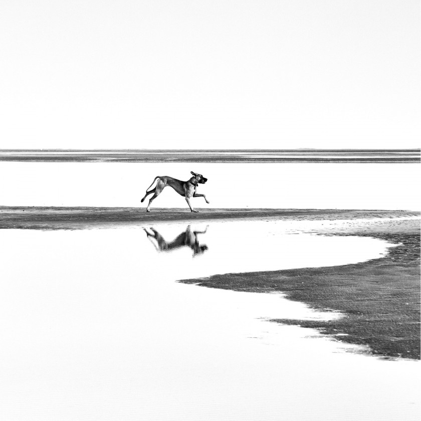 Umelecká fotografie Glossy Art GM02, 100x100 cm