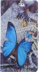 """Univerzálne púzdro pre telefón do 5,5"""", motýlik"""