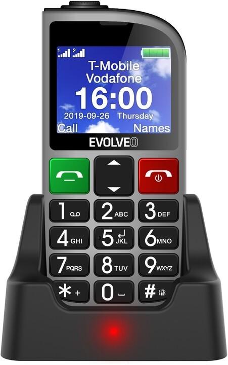 Základný telefón Tlačidlový telefón pre seniorov Evolveo EasyPhone FM, strieborná
