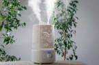 Aký je najlepší zvlhčovač vzduchu?